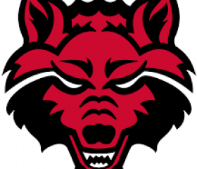 Arkansas State RedWolves2